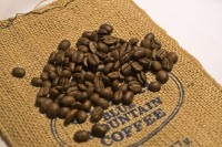 Bohnen Blue Mountain Coffee